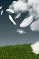 Народная мудрость: Притчи, пословицы, поговорки, присказки, приметы... 163671-d2789-58044434-h200-u270b6