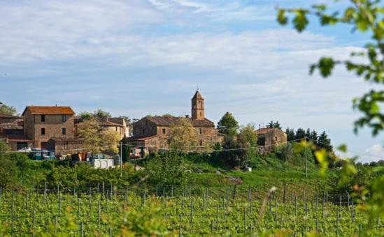 Вид на фатторию Сан-Донато с окрестных виноградников.