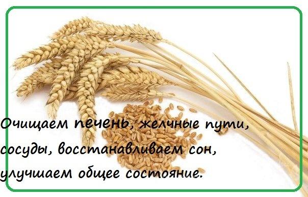 http://data21.gallery.ru/albums/gallery/339576-cfa95-78045473-m750x740-ubc276.jpg